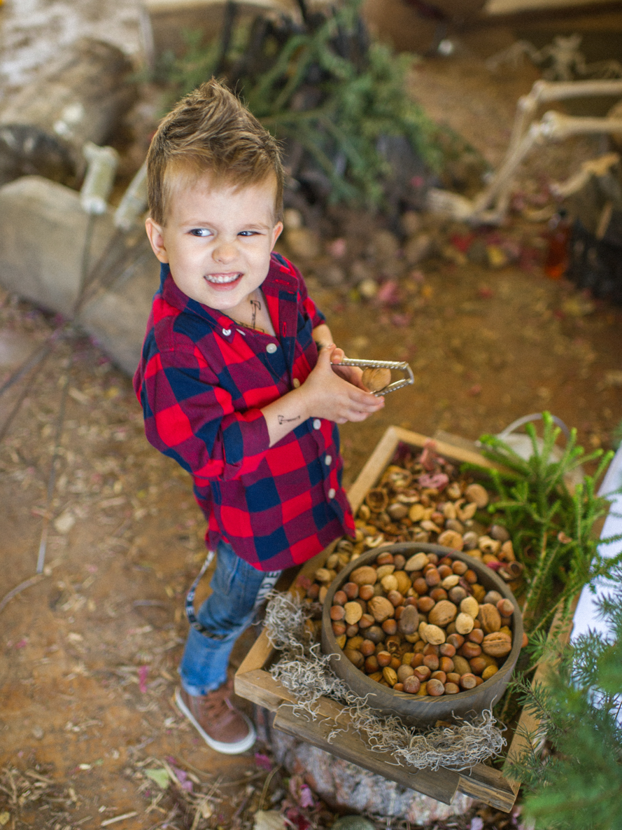 The Lost Lumberjack – Eli's 5th Birthday Bash on Martha Stewart Elis Lost Lumberjack Party 018